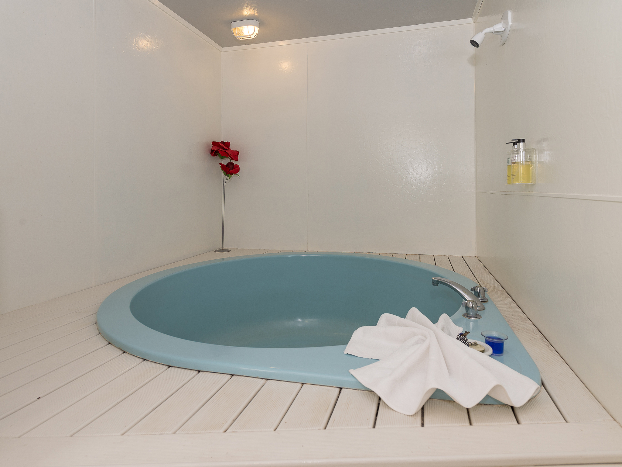 Spa Pool Studio | Rotorua Accommodation