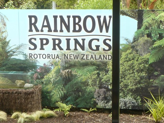 Rainbow Springs | Rotorua Attraction