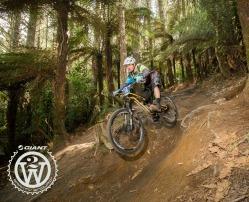 Mountain Biking | Rotorua | Accommodation