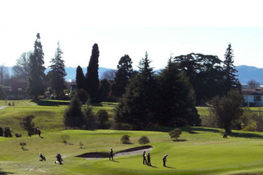 Golf Package | Palm Court Rotorua Motel