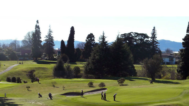 Golf Package - Palm Court Rotorua, rotorua accommodation