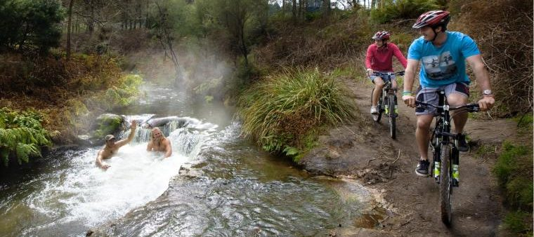 Palmcourt Rotorua Winter Bike Trails