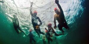 Swim - Palm Court Rotorua
