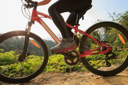 The ultimate guide to mountain biking in rotorua
